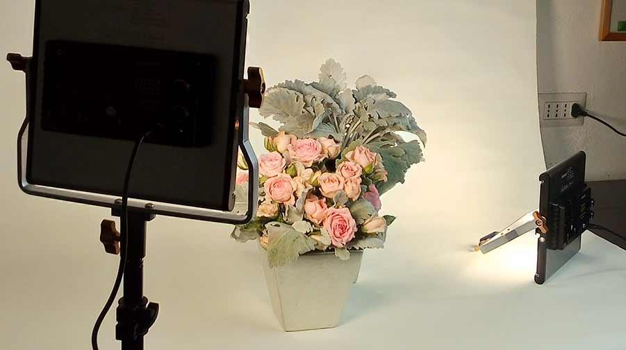 Fotografia - Studio Arti Floreali