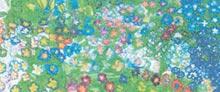 Mostra - Tutti i colori della stelletta - 2004