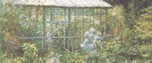 Mostra - Echi e riflessi della natura - Giuseppe Giorgi - 2004