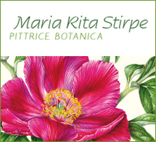 Maria Rita Stirpe - Pittrice Botanica