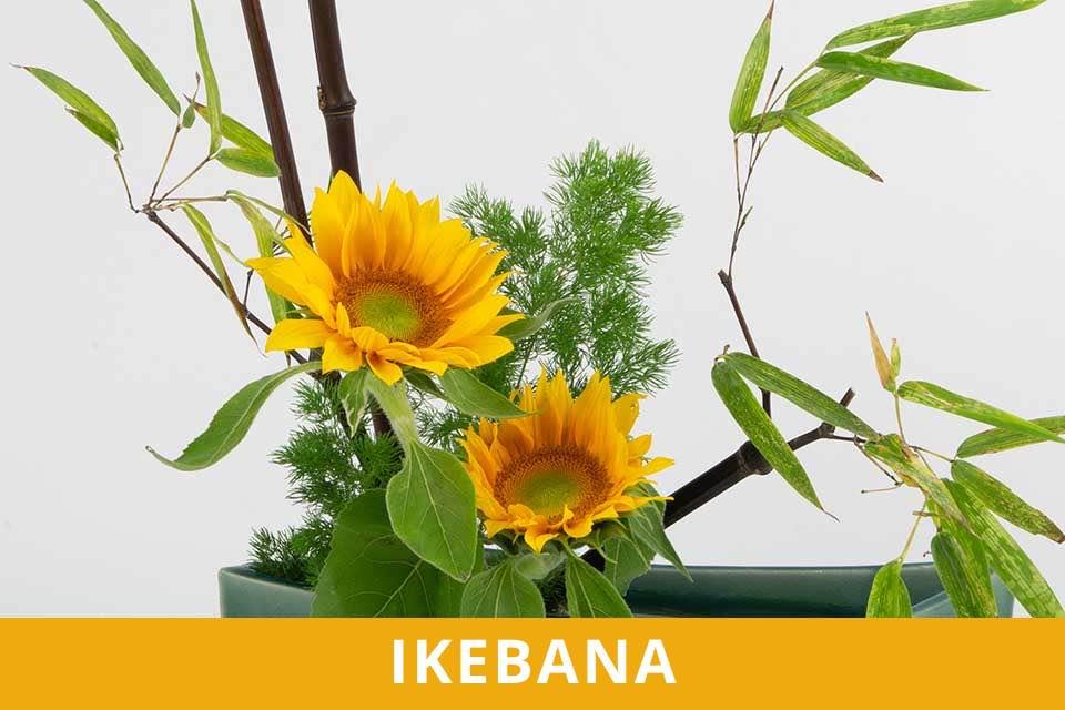 Ikebana - Incontri di Ikebana - Lezioni