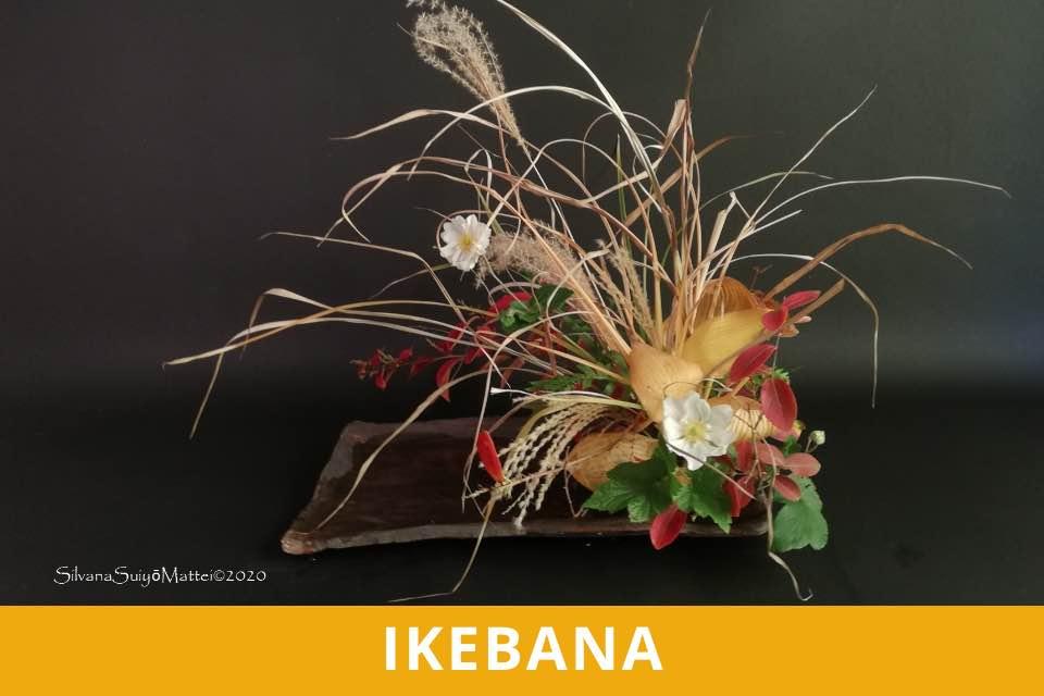 Ikebana - Master - Mattei - Ottobre 2021