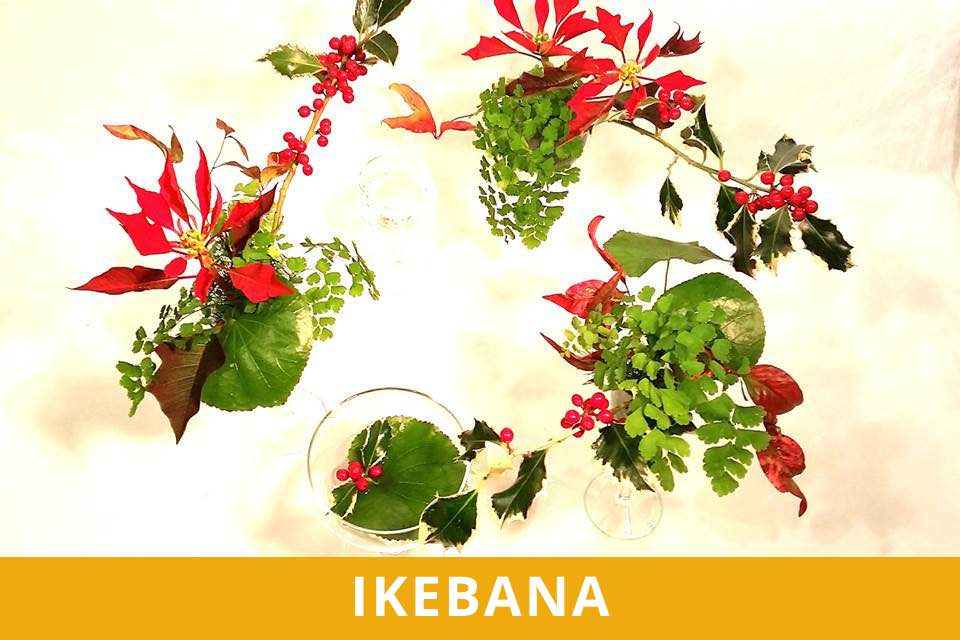 Ikebana - Natale - Mattei - Dicembre 2021