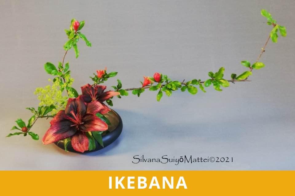 Ikebana - Principianti - Grassi - Ottobre 2021